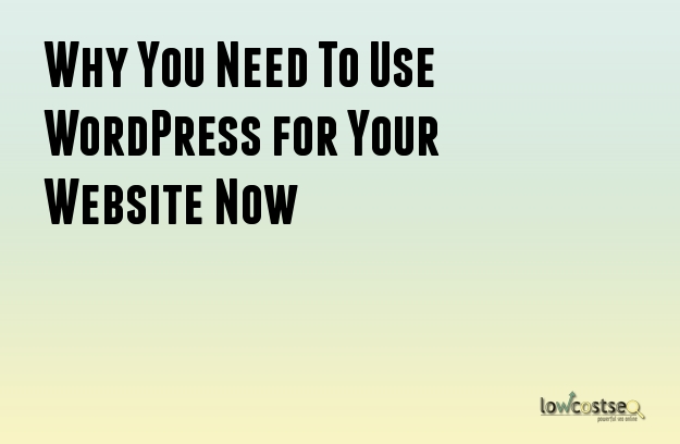 Why You Need To Use WordPress for Your Website Now