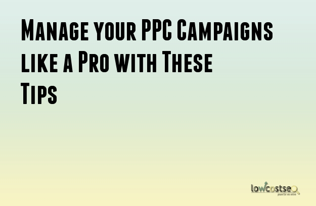 Manage your PPC Campaigns like a Pro with These Tips