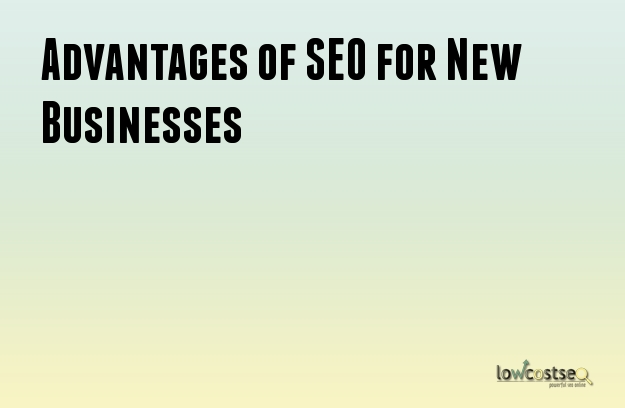 Advantages of SEO for New Businesses