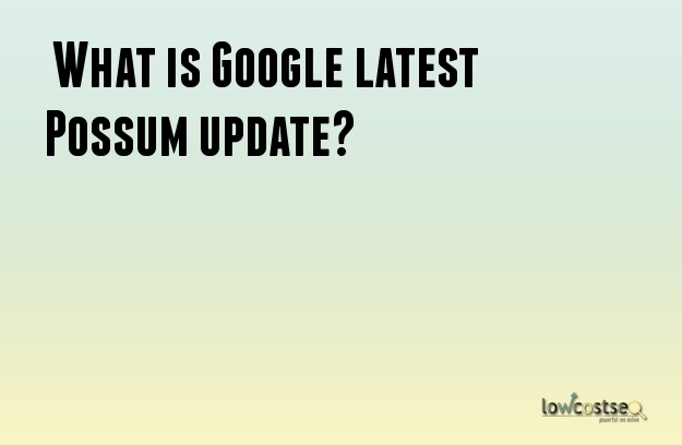 What is Google latest Possum update?