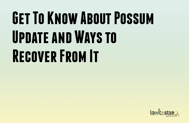 Get To Know About Possum Update and Ways to Recover From It