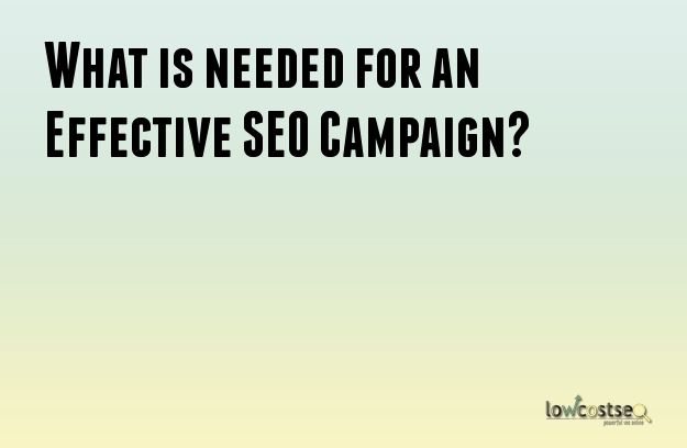 What is needed for an Effective SEO Campaign?