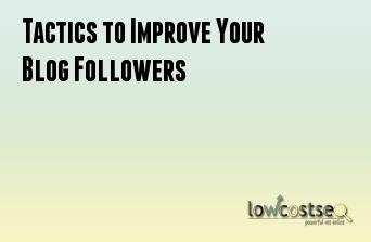 Tactics to Improve Your Blog Followers