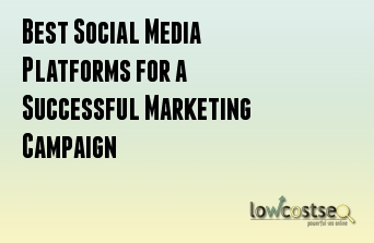 Best Social Media Platforms for a Successful Marketing Campaign