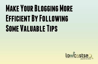 Make Your Blogging More Efficient By Following Some Valuable Tips