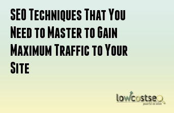 SEO Techniques That You Need to Master to Gain Maximum Traffic to Your Site