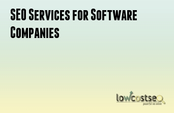 SEO Services for Software Companies