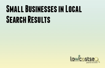 Small Businesses in Local Search Results